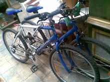 These bikes from the Bower were $135 each